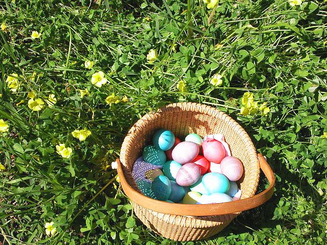 easter basket for egg hunt